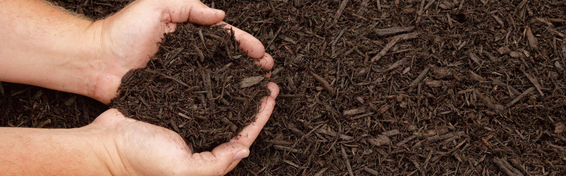Seventy west landscape supply morehead city nc mulch for Soil vs dirt
